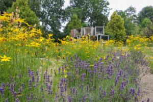 Utilisation des plantes vivaces dans les cimetières