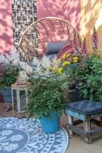 Les plantes de balcon nous donnent le sourire